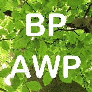 BP AWP